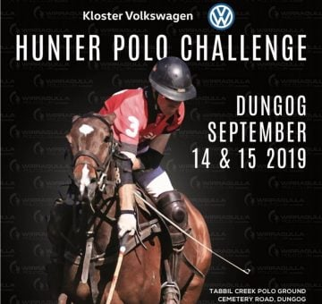 Polo Challenge - Dungog Visitor Centre